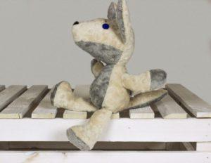 wilk biały 3